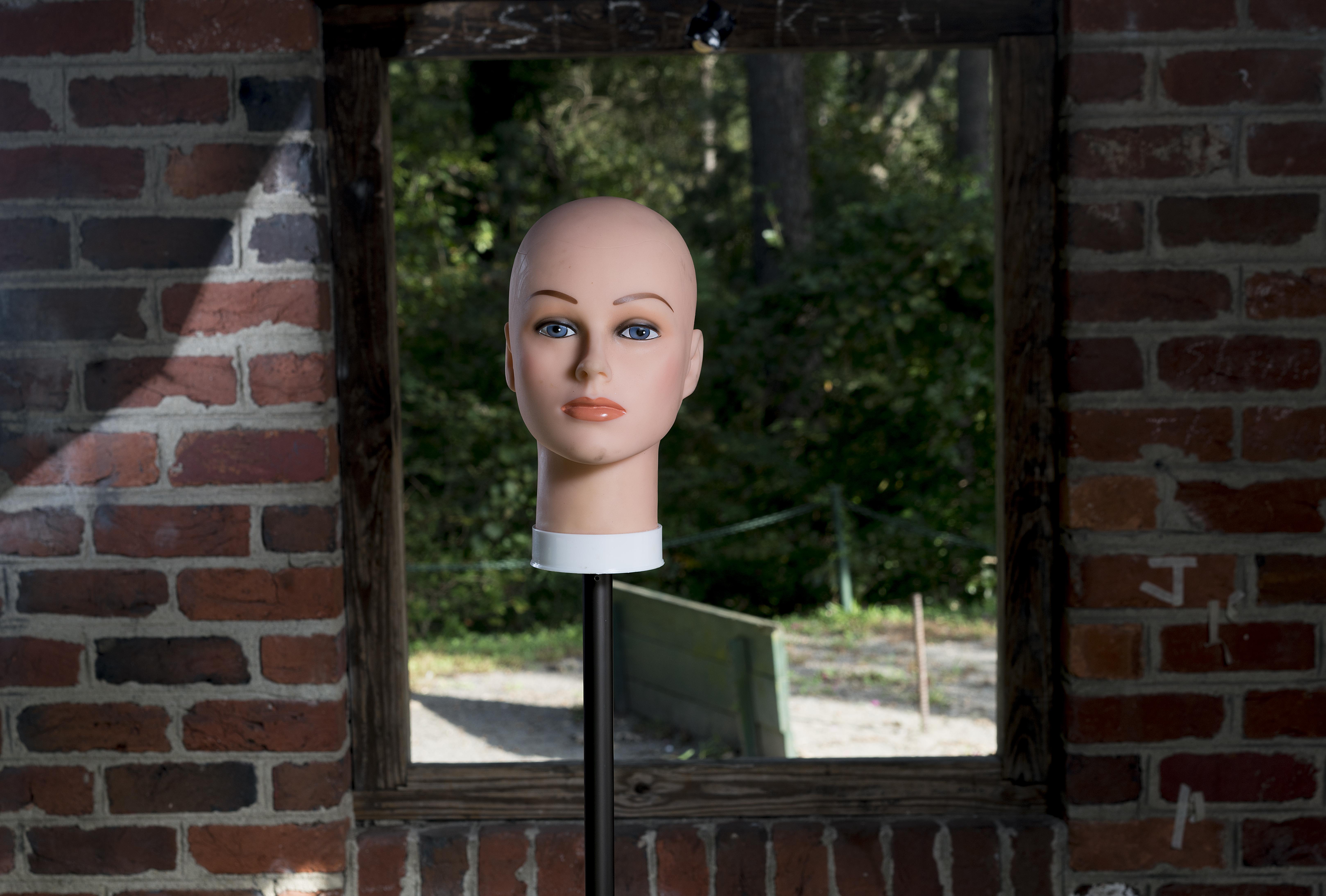 Head window